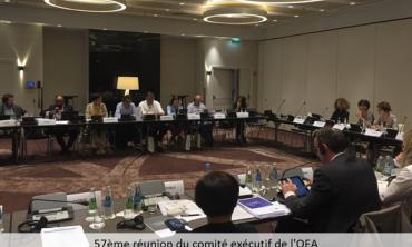 El OEA hace balance del rol y de los enfoques de la educación mediática en Europa