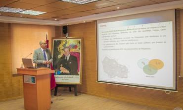 La HACA organise une journée d'étude sur les réseaux SFN