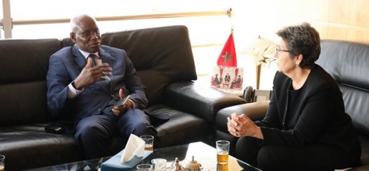رئيسة الهيأة العليا للاتصال السمعي البصري تستقبل رئيس الهيأة العليا للاتصال بمالي
